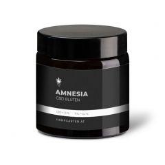 Amnesia Haze Premium Blüten