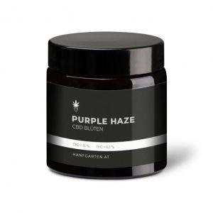 Purple Haze Premium Blüten