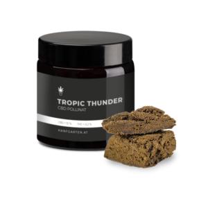 Tropic Thunder Pollinat